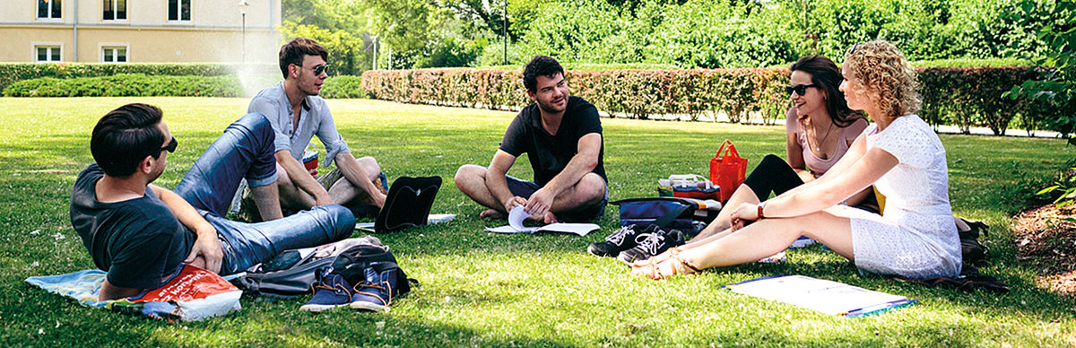 Studierende auf einer Wiese